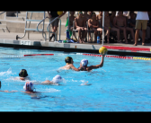 Tiger Water Polo Annihilates Bearcats