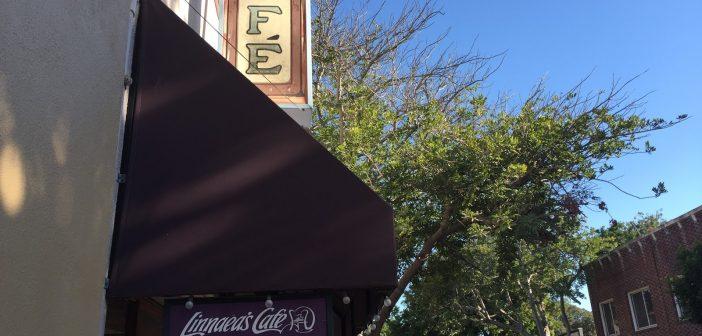 Local Coffee Shops Vs. Chains