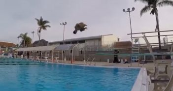 Sophomore Patrick Reichmuth Dives Into Diving